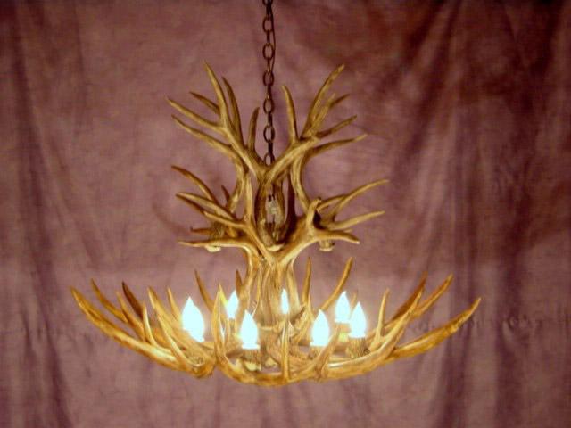 antler chandeliers and antler lighting warehouse mule deer antler
