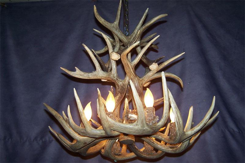 Antler Chandeliers Deer Antler Lighting And Real Antler Lamps