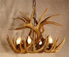 White Tail Deer Chandeliers