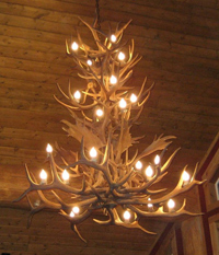 Reproduction Elk / Fallow/ White-tail / Mule Deer chandelier